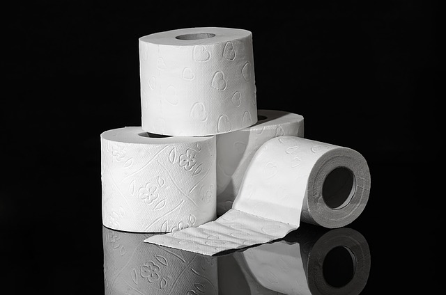 Toilet Paper Roll Figures Included
